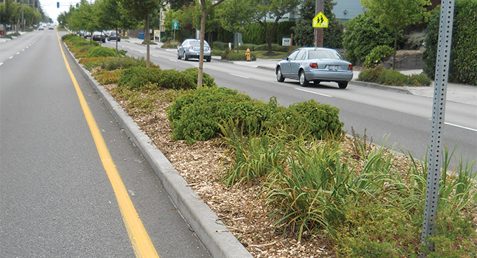A landscaped traffic median separates opposing vehicle traffic.